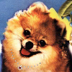 Cute POMERANIAN Dog Purse